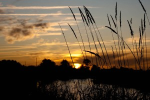 coucher_soleil_vendee_photo_tony newell