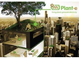 image_photo_plant_e