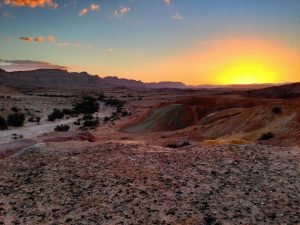 Negev_Desert_photo_Matthewjparker