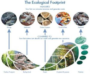 Ecological Footprin