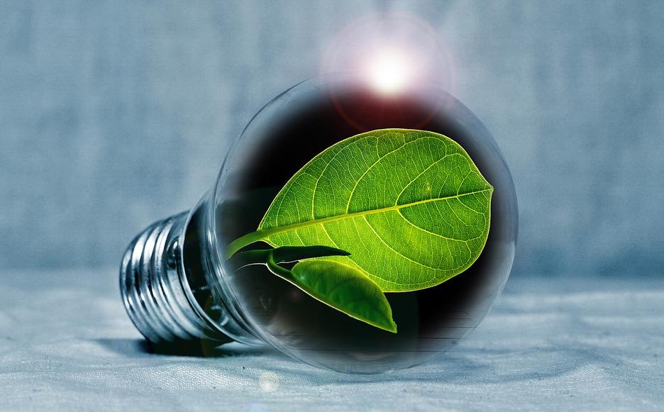 electricite-renouvelable-enercoop
