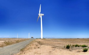 éoliennes_afrique_photowarrenski