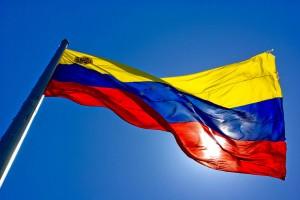 drapeau_venezuela_photo_Alex Lanz