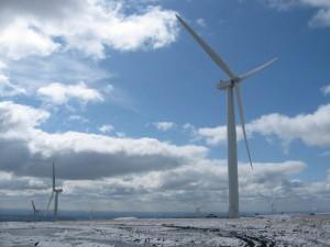 wind_farm_photo_Paul Anderson