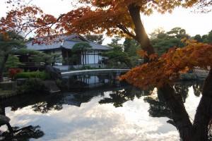 Hyogo_pond_photo_Duncan WJ Palmer