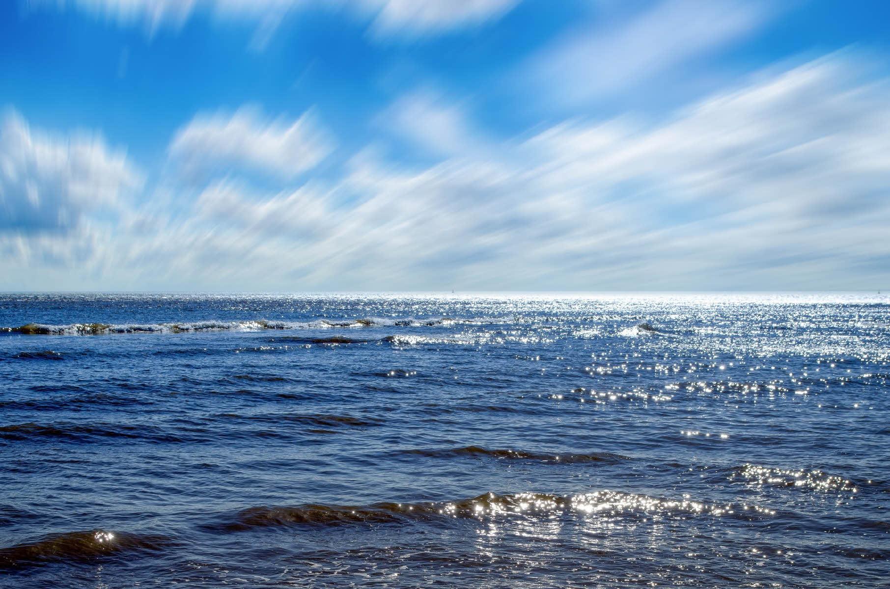 marine цвет фото