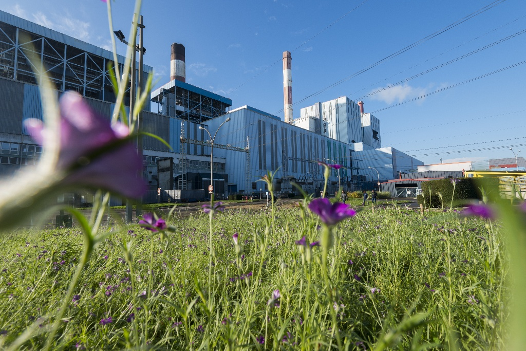 centrale-a-charbon-cordemais-emissions-co2