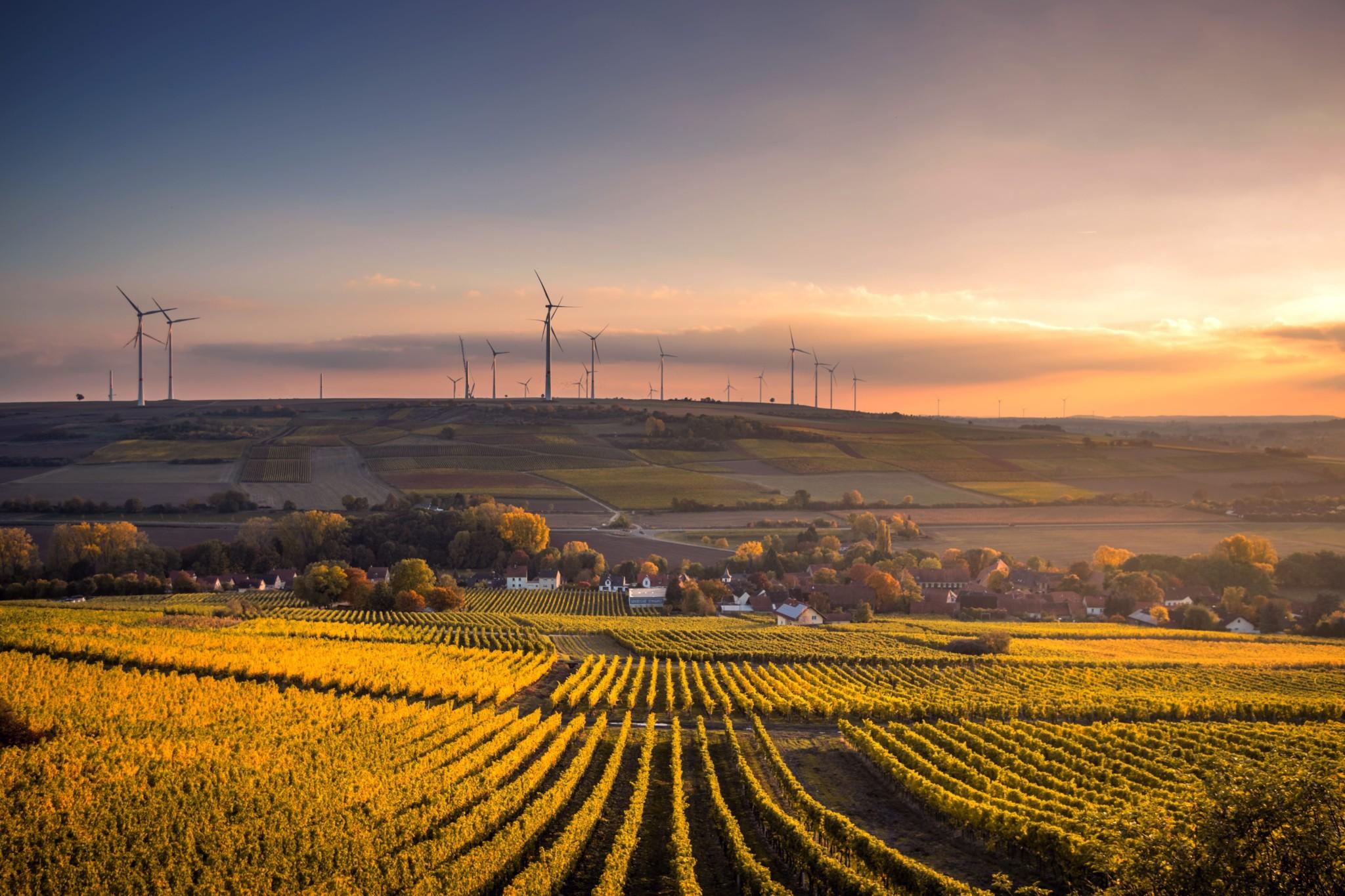 energies-renouvelables-financement-cour-des-comptes