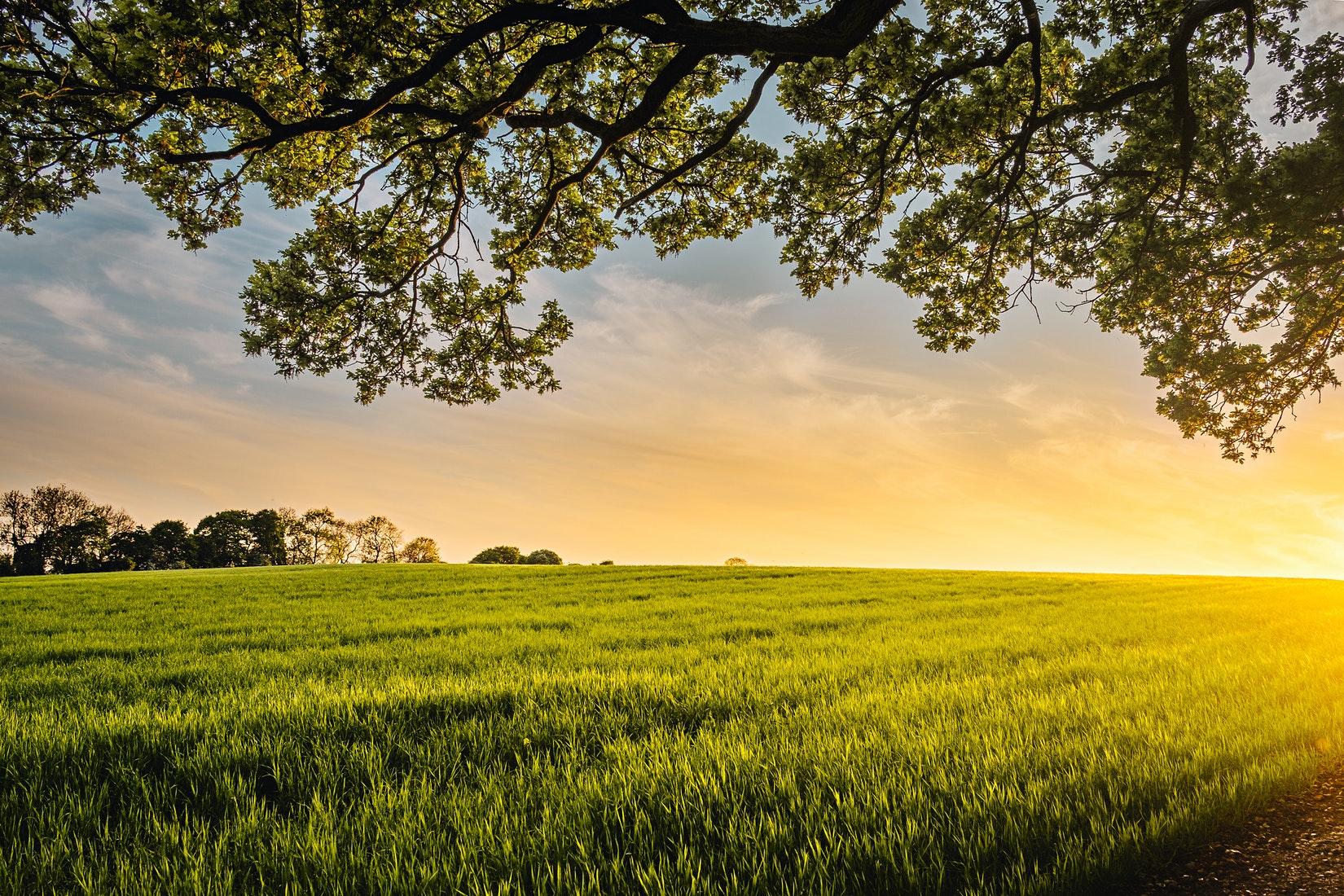 ppe biomethane transition énergétique