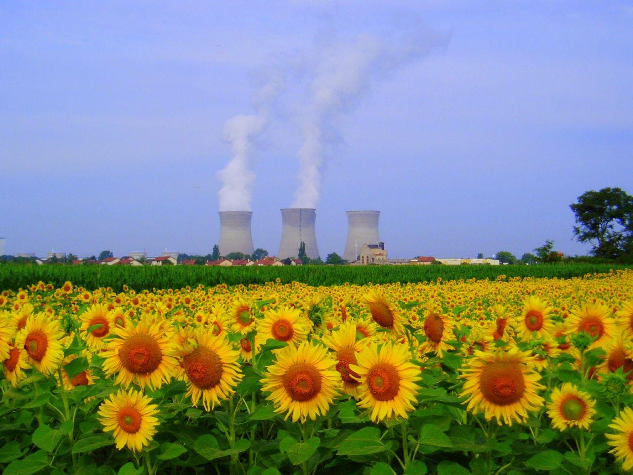 elisabeth borne edf scenario renouvelables - L'Energeek