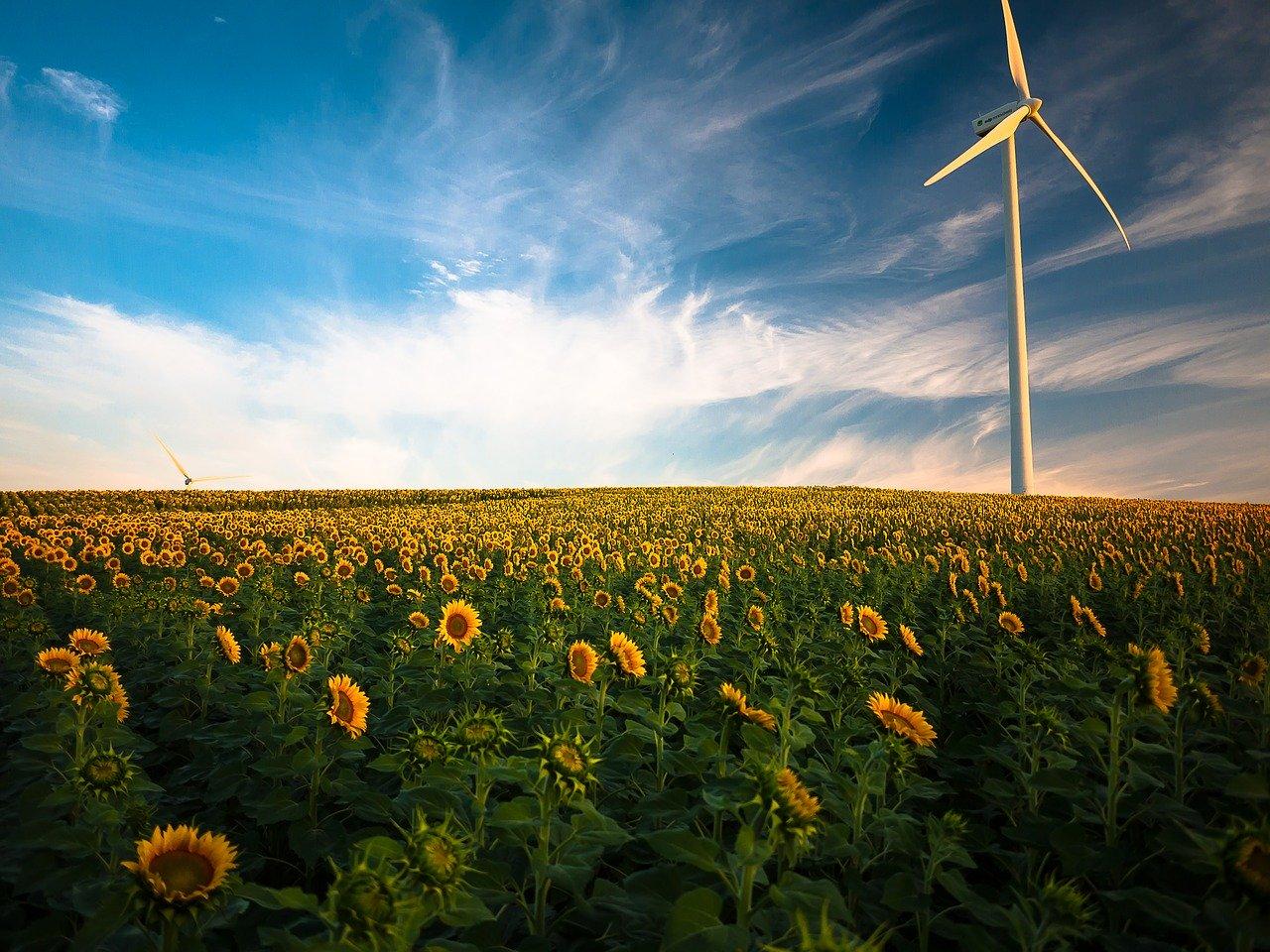 Agriculture française et transition énergétique