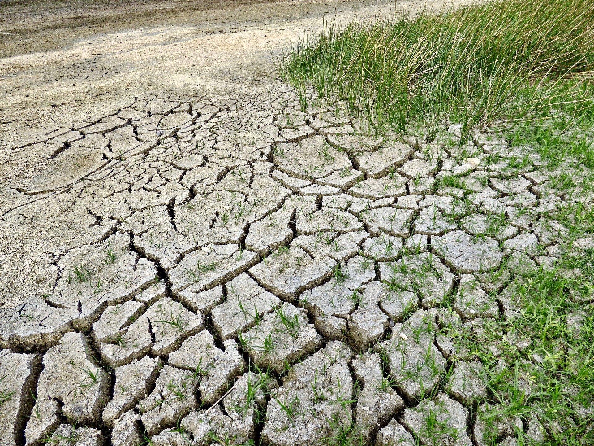changement climatique action court terme rapport giec - L'Energeek